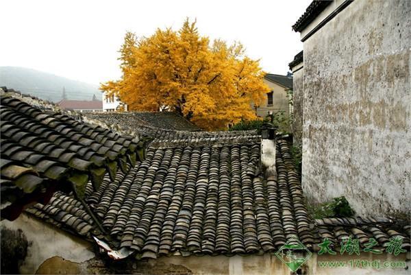 西山雕花楼(徐氏仁本堂)