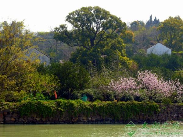 甪里古村—西山古村之源-旅游景点-苏州西山农家乐