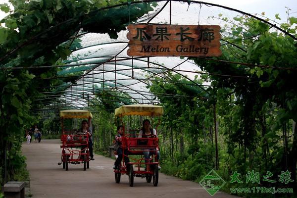 苏州太湖绿光休闲农场-旅游景点-苏州西山农家乐