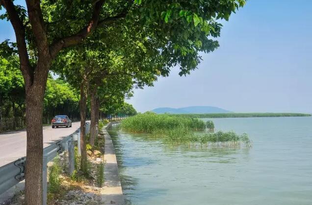 苏州西山农家乐 太湖快讯  夏日里阳光下,气温颇高,但环岛公路因临湖