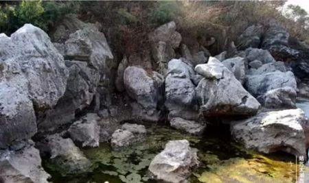 太湖石,大自然的巧夺天工图片